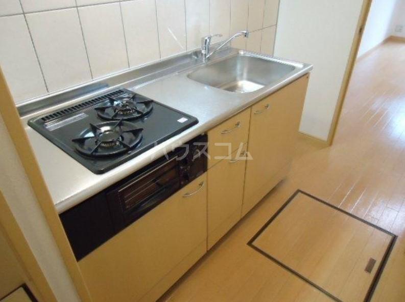 E・SHALIMAR(イーストシャリマール) 101号室のキッチン