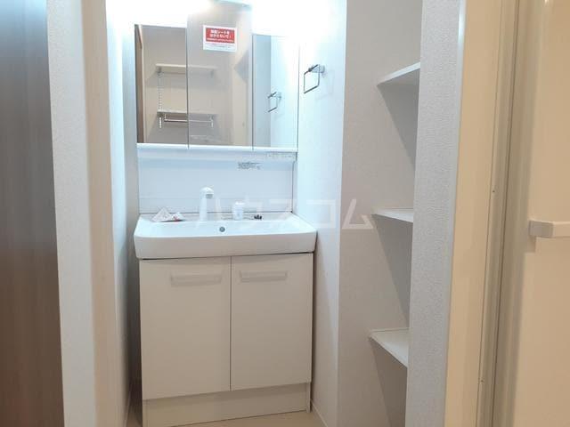 サン・トレイス 03020号室の洗面所