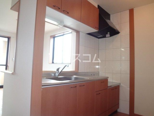 グレイスシャトー 203号室のキッチン