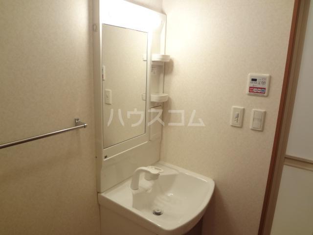 グレイスシャトー 203号室の洗面所