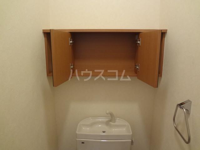 グレイスシャトー 203号室のトイレ