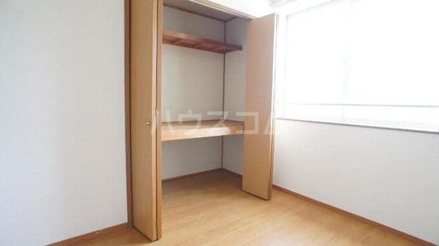 ドリームビレッジ2 02010号室の収納