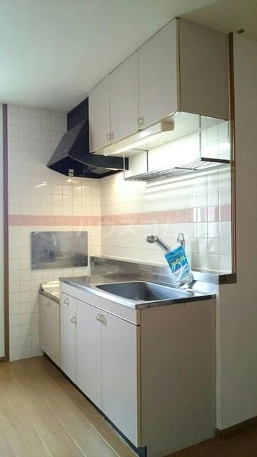 ドリームビレッジ2 02010号室のキッチン