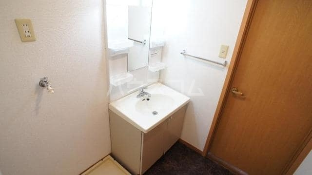 ドリームビレッジ2 02010号室の洗面所