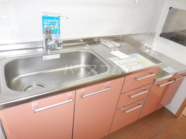 グレイスフル・B 02050号室のキッチン