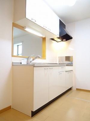 ブリーズA 01010号室のキッチン