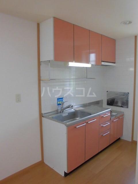 アルピン ヒルB 02020号室のキッチン