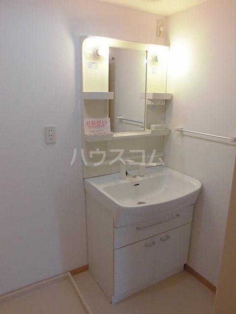 アルピン ヒルB 02020号室の洗面所