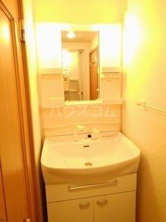 パール・カーサB 02010号室の洗面所