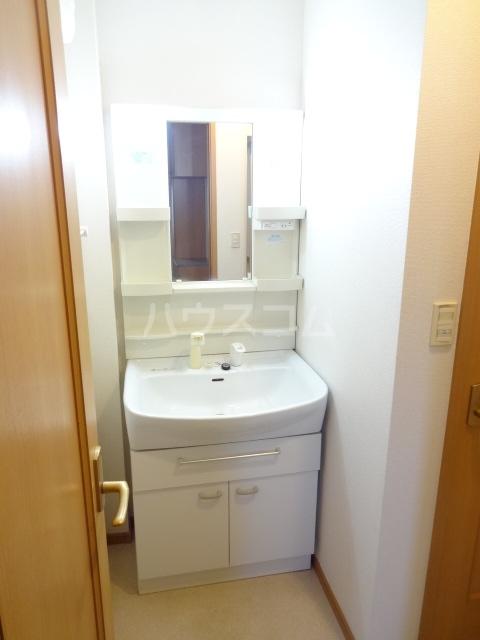 ランテマリオ アルバ 01010号室の洗面所