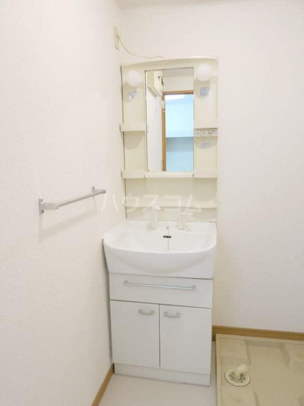 アネックス・ヒル39 02040号室の洗面所