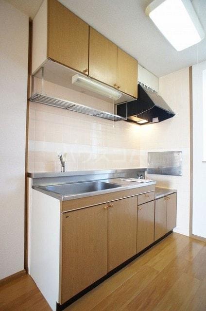 ステディールーツ 02020号室のキッチン