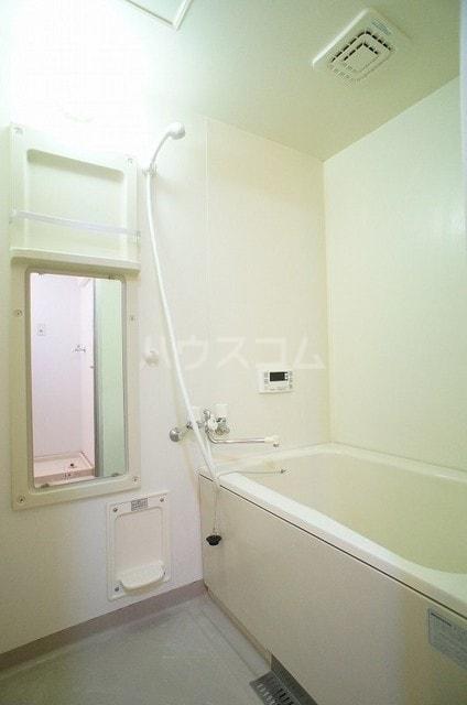 ステディールーツ 02020号室の風呂