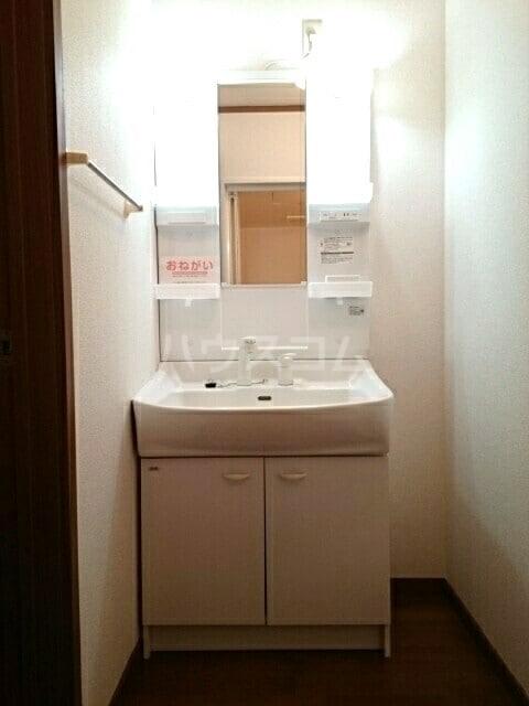 シャルマンタツミA 01010号室の洗面所