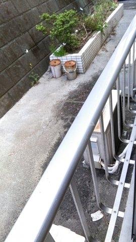 サザンノーブル上大岡 203号室の庭