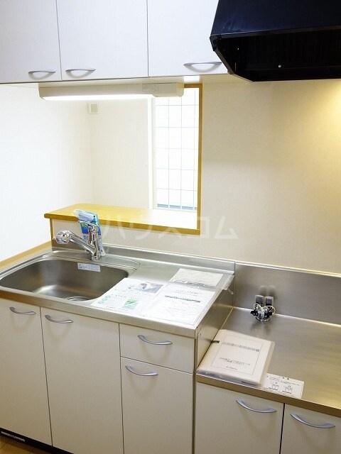 ミストラルB 02040号室のキッチン