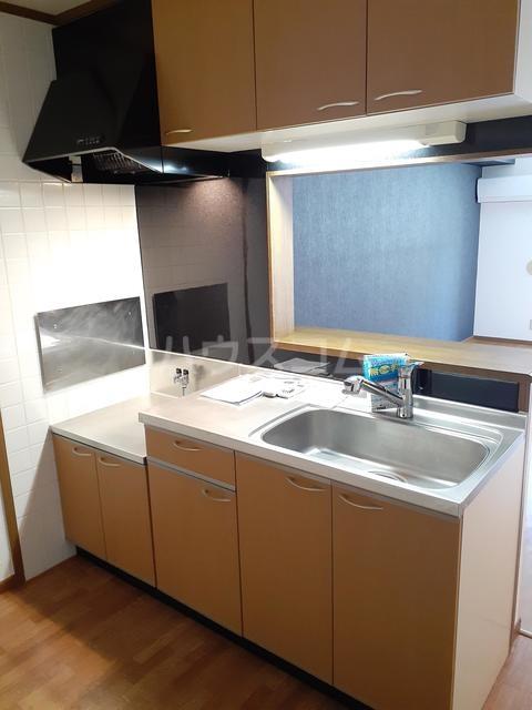 シャルマンタツミA 02030号室のキッチン