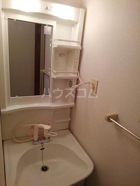 シーサイドヴィラⅡ 01030号室の洗面所