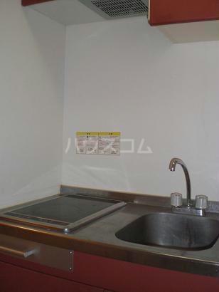 レオパレスエターナルガーデン 109号室のキッチン