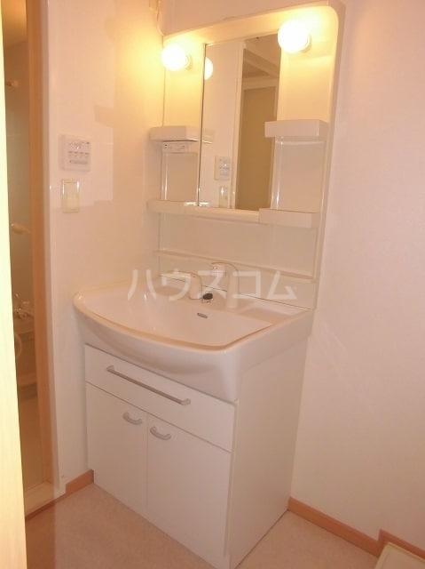 ベル・カーサ 02010号室の洗面所