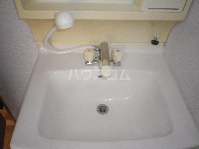エレガンス小川 305号室の洗面所