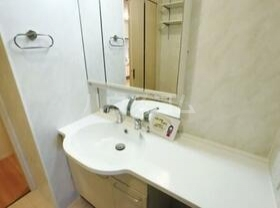 Droom-B 107号室の洗面所