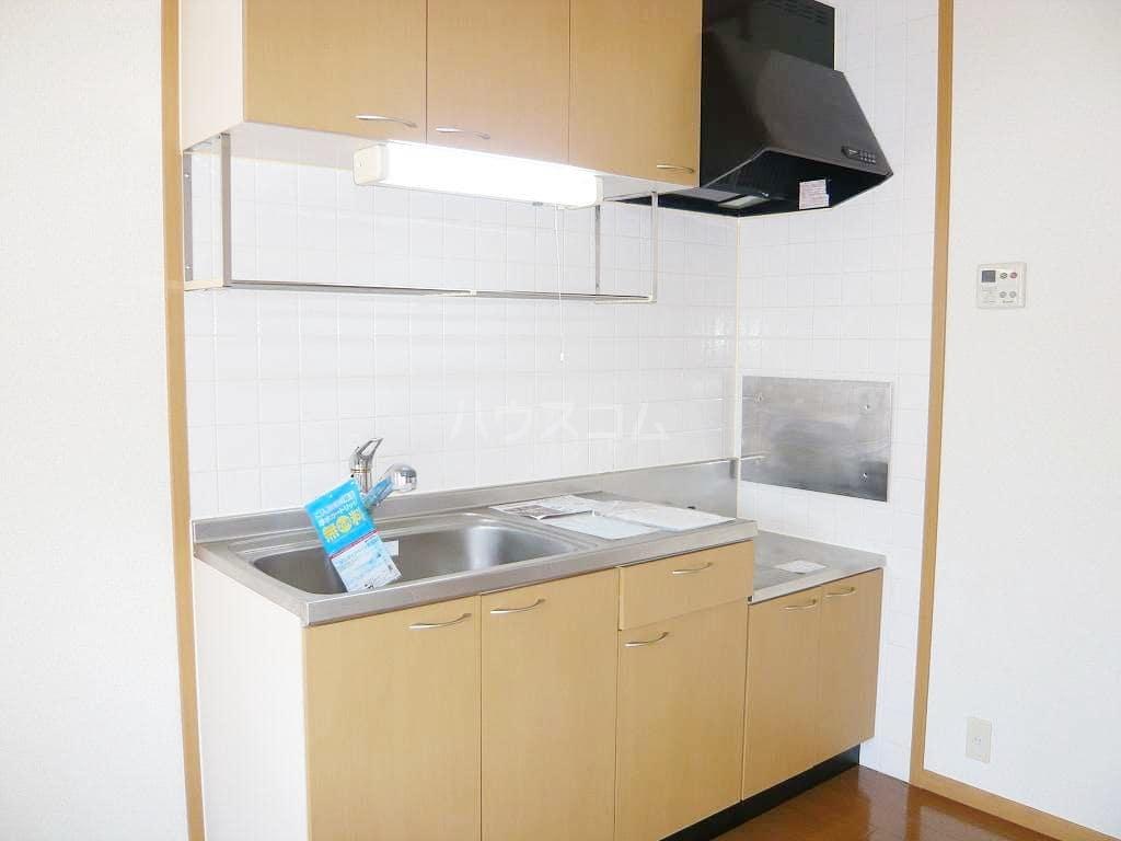 ライゼ・アルカンシエルC 02010号室のキッチン