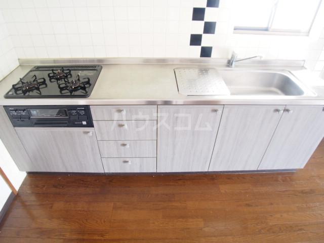 マルマツハイツ 201号室のキッチン