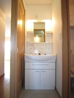 サンライト・キュート 01020号室の洗面所