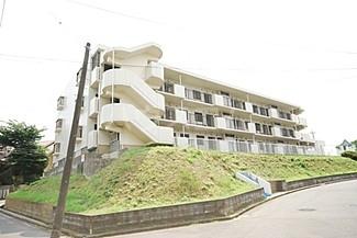 富士見台ハイツ 306号室のリビング