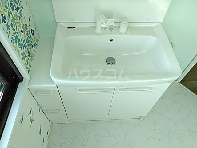 エクシードヒルズ 401号室の洗面所