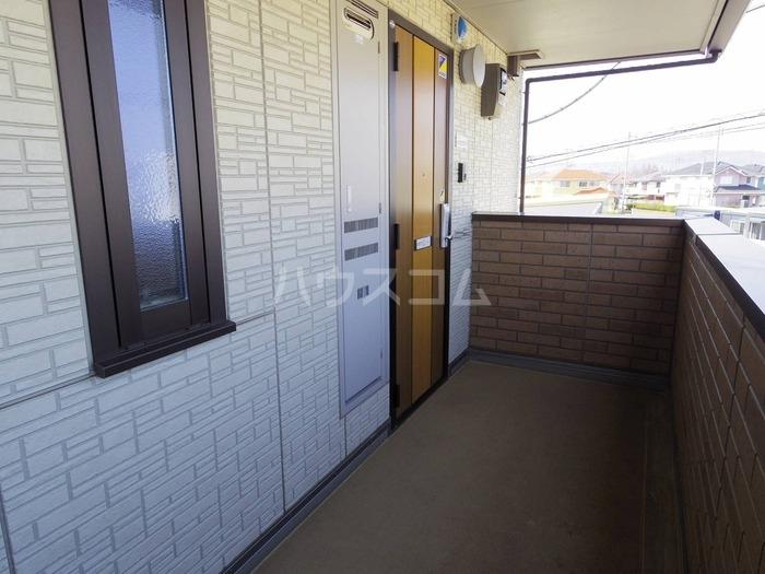 サニーフラット 207号室の玄関