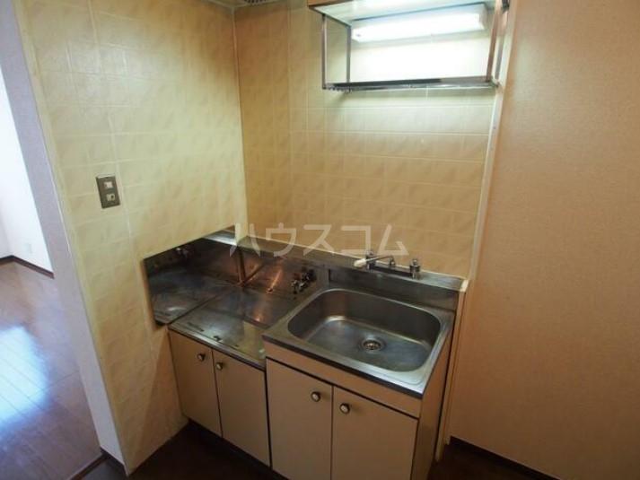 DUEX YUKI 202号室のキッチン