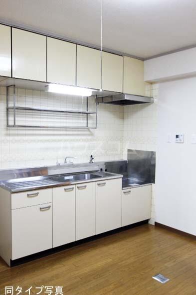 メゾン・ド・ロア 310号室のキッチン