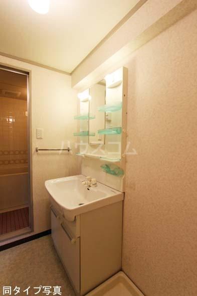 メゾン・ド・ロア 310号室の洗面所