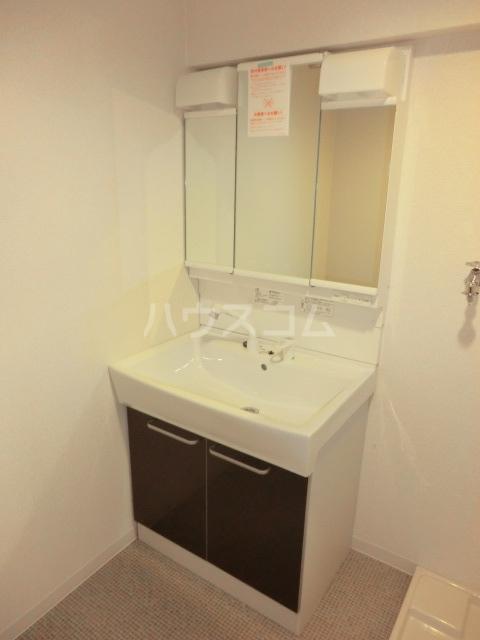 シャンポール近藤 501号室の洗面所
