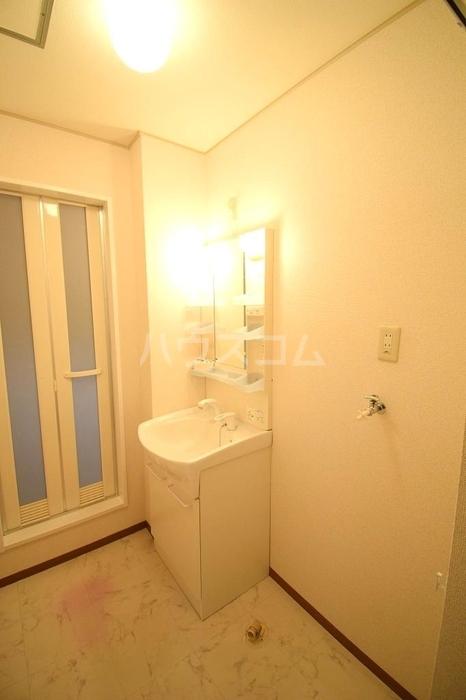 Amabile 102号室の洗面所