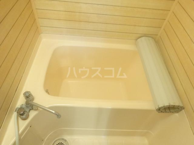 ハイツグレースメイト 405号室の風呂