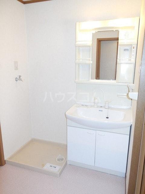 パルテール ヴィラ K 03030号室の洗面所