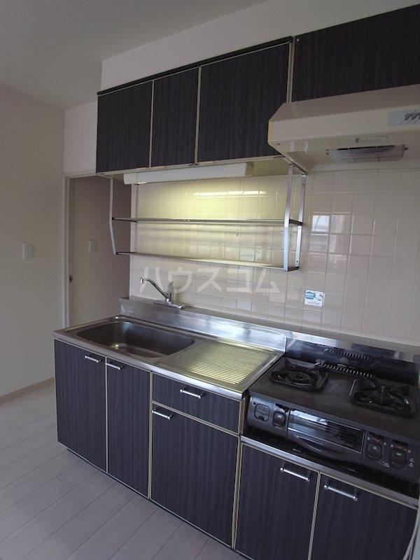 トピア清龍Ⅱ 203号室のキッチン