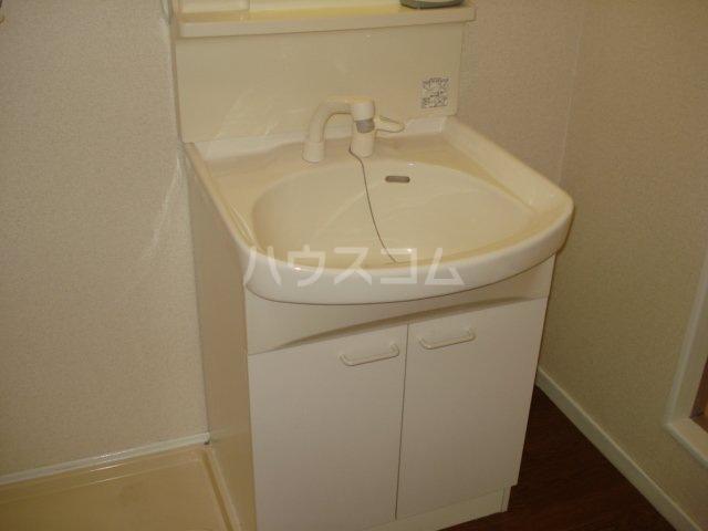 ミナミブルータウン光与 00401号室の洗面所