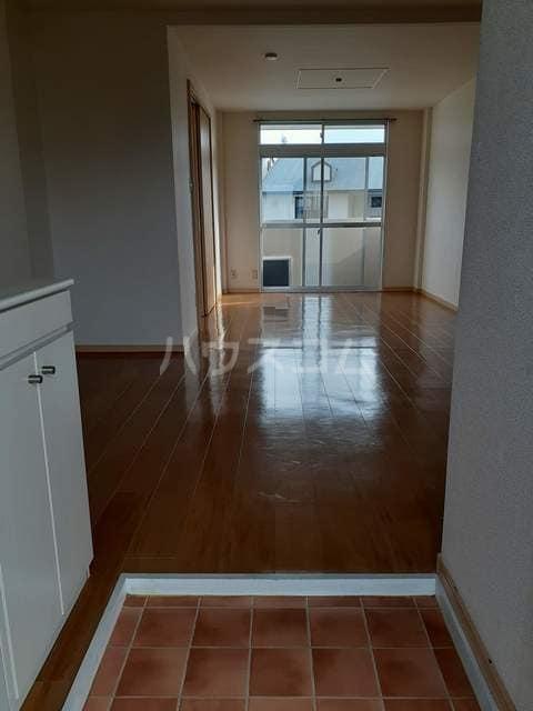 エルディム屋島 02050号室の玄関