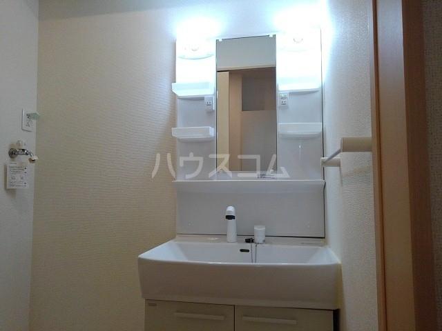カーサ・パルドⅡ 01030号室の洗面所