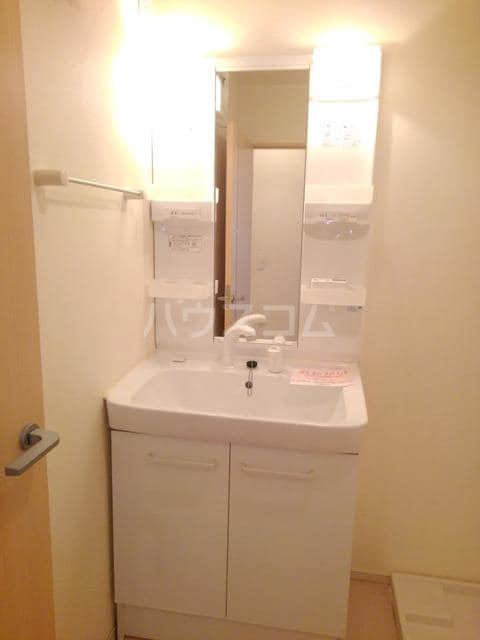 カーサ・ブランドール C 02020号室の洗面所