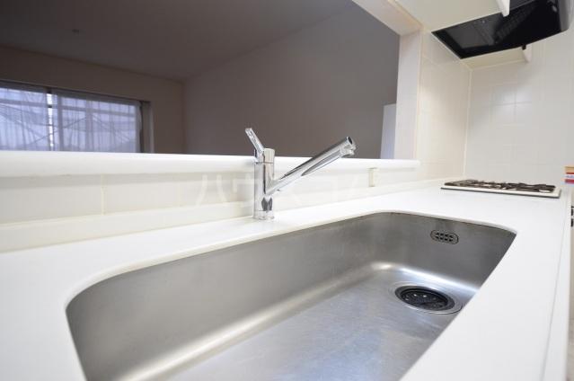 メリディアンガーデン雪月花 307号室のキッチン