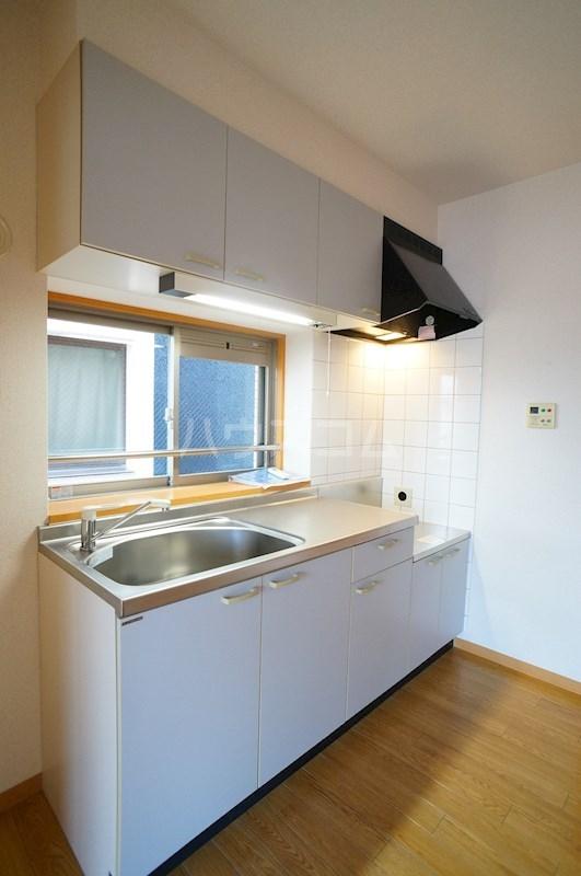 フェニシアン 402号室のキッチン