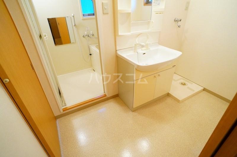 フェニシアン 402号室の洗面所
