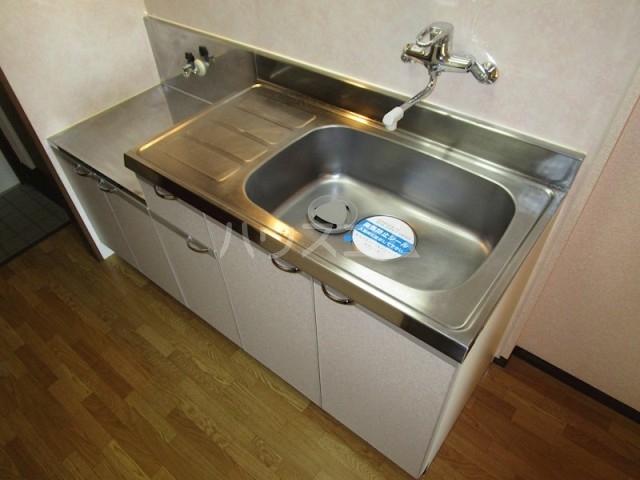 グレイス・ランⅡ 303号室のキッチン