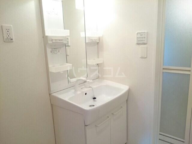 サリュー Ⅱ 01020号室の洗面所