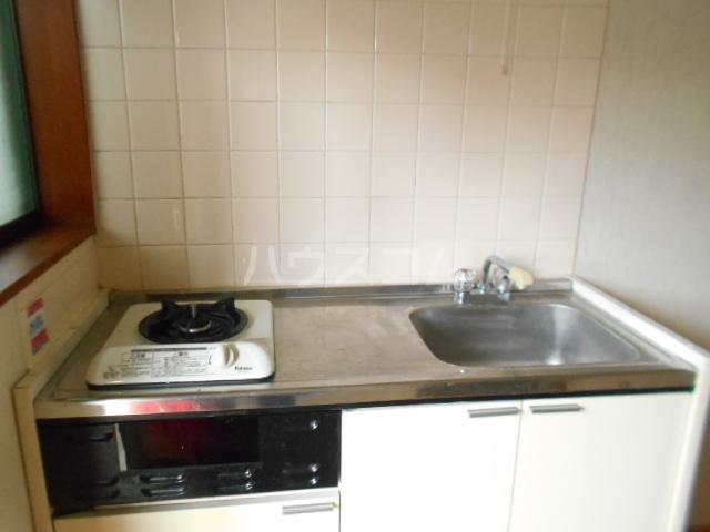 グリーンピア光 202号室のキッチン